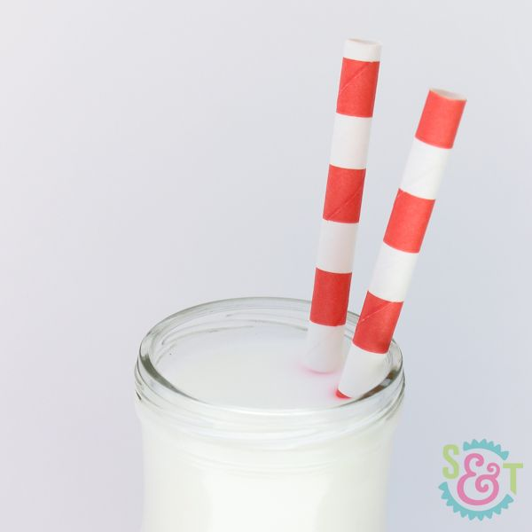 Coral Rugby Striped Paper Straws - Striped Paper Straws