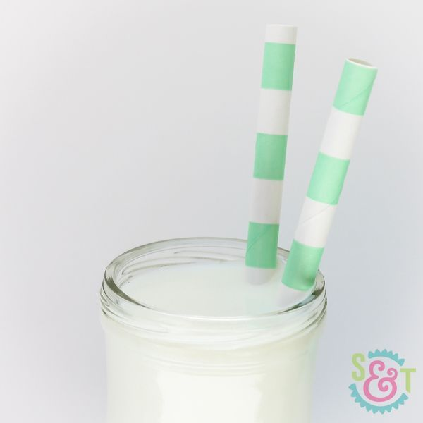 Mint Green Rugby Striped Paper Straws - Striped Paper Straws