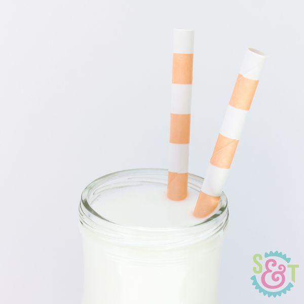 Peach Rugby Striped Paper Straws - Striped Paper Straws